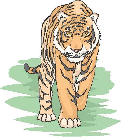 Go Tigers!!